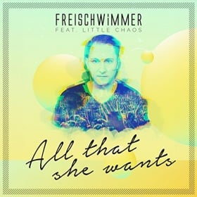 FREISCHWIMMER FEAT. LITTLE CHAOS - ALL THAT SHE WANTS